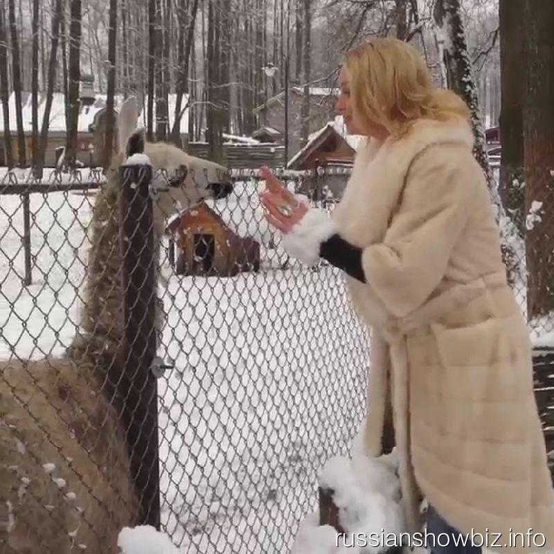 Анастасия Волочкова с ламами