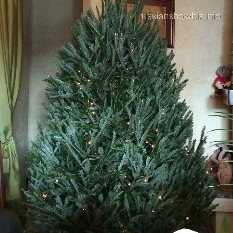 Новогодняя ель Анастасии Волочковой