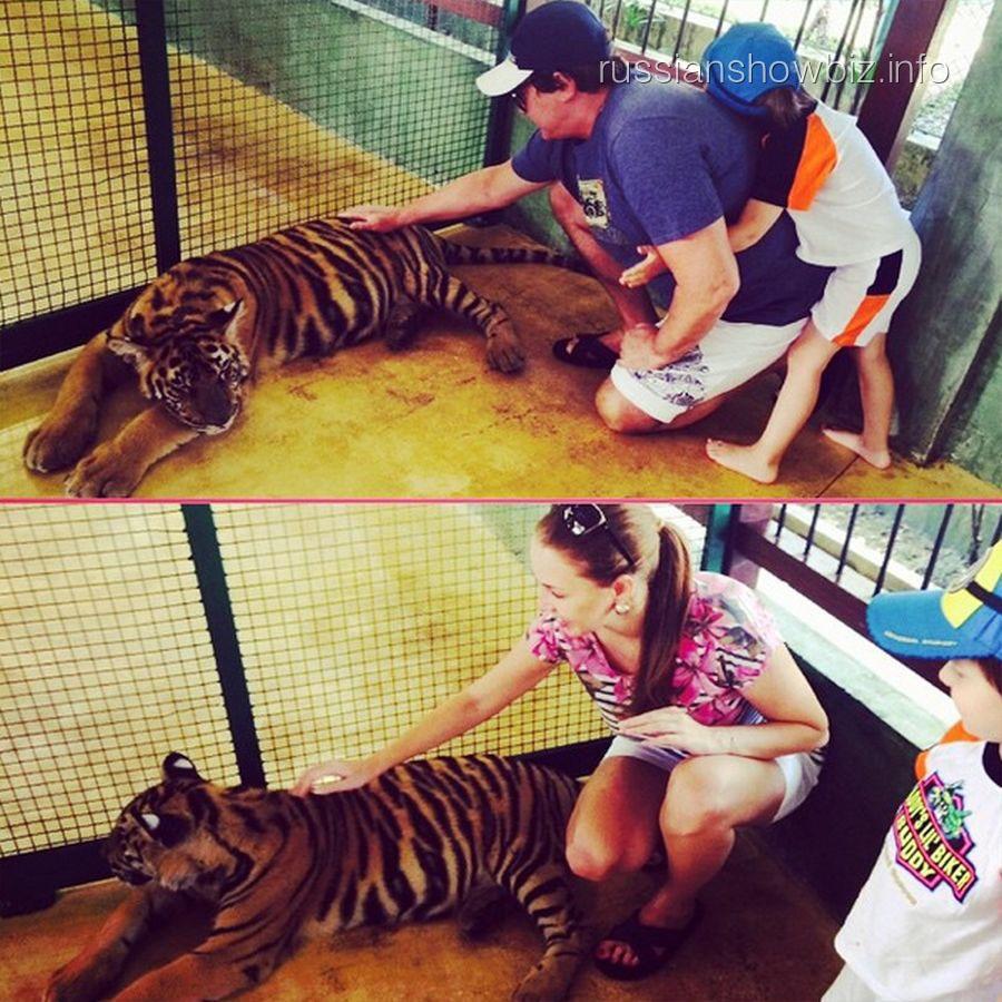 Полина и Дмитрий Дибровы в клетке с тиграми