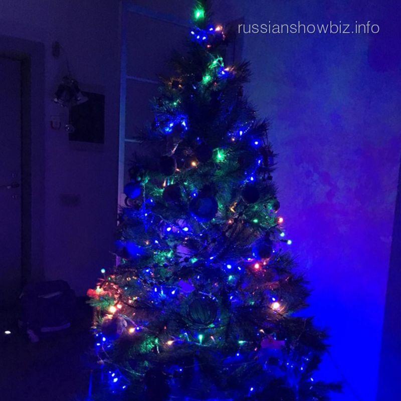 Новогодняя ель Даны Борисовой